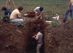 Soil Survey: Prediction of Sum of Bases Using K-Nearest Neighbor Approach