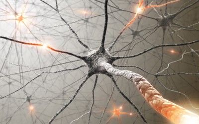 EMDR Therapy Mechanisms Explained by the Theory of Neural Cognition