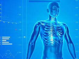 Optimization of Plasma Bioregulatory Effects in Children 5-6 Years Old with Scoliosis against the Background of Daily Wearing of Medical and Preventive Clothing