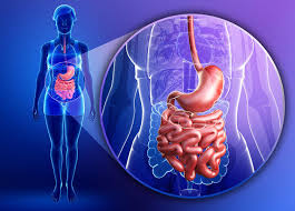 Awards 2020 on Digestive Disease