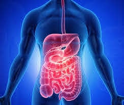Digestive Disease 2021 scheduled at Venice, Italy during June 22-23, 2021