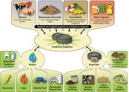 Applications of the Anaerobic Digestion Process