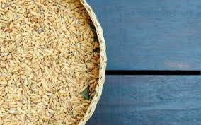 Rice Bran Stabilization using Papain Enzyme