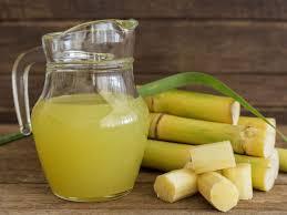 Pathogenic Behaviour Pattern of Colletotrichum falcatum Isolates of Sugarcane in Sub-tropical India