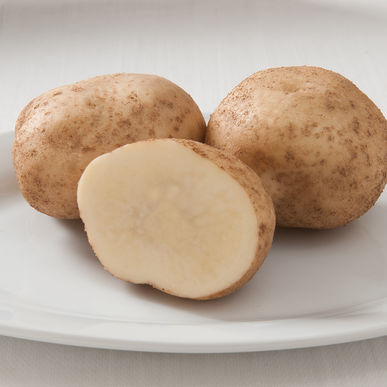 Effect of Varieties and Tuber Sizes on Losses of Ascorbic Acid and Phenol Content of Potato Tubers Stored Under Ambient Conditions
