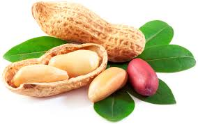 Commercial Peanut Cultivars for the Improvement of Seed Physicochemicals and Fatty Acids